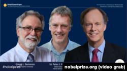 На скриншоте – лауреаты Нобелевской премии по физиологии или медицине за 2019 год: ученые Грег Семенца, Питер Рэдклифф, Уильям Кэйлин.