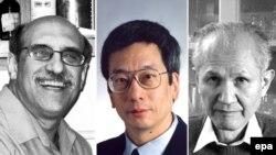 Мартін Чалфі, Роджер Тсієн та Осаму Сімомура отримали Нобелівську премію з хімії 2008 року.