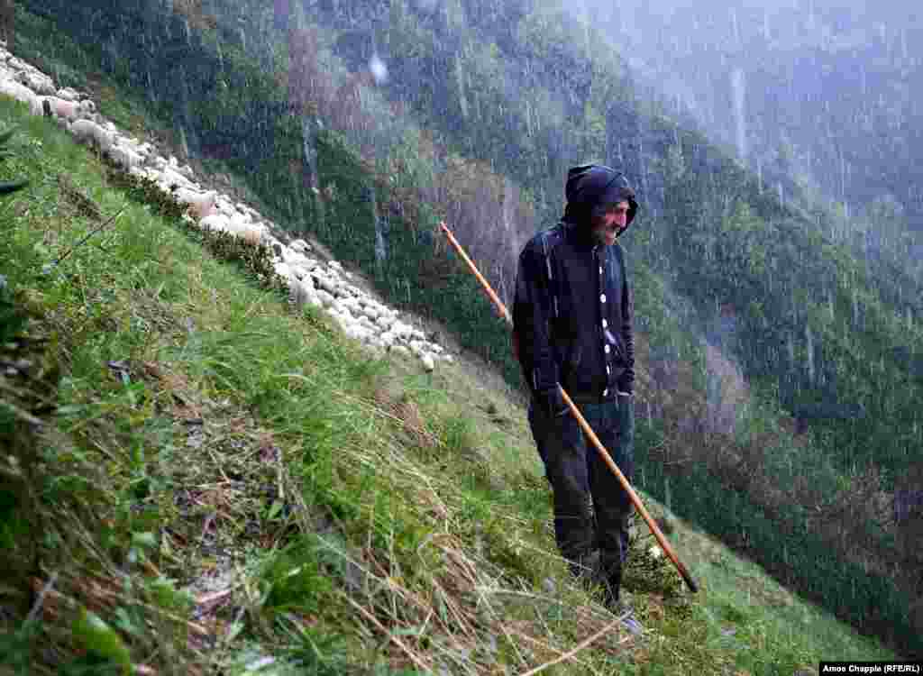 A shepherd in Georgia's Tusheti mountains on May 28. Photographer Amos Chapple documented the shepherds' tough life in his story, The Shepherds' Return. (Amos Chapple, RFE/RL)