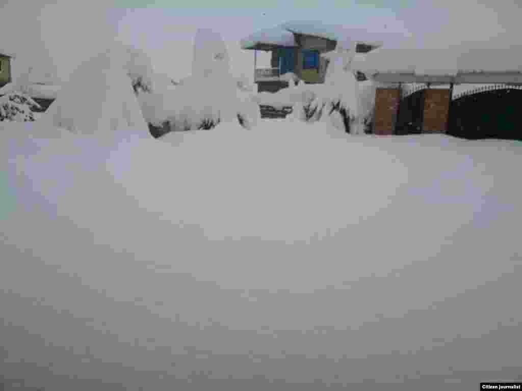 برف سنگین در تنکابن