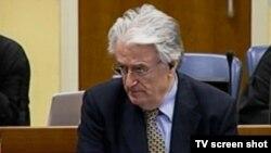 Radovan Karadžić u sudnici, 29. listopad 2013.