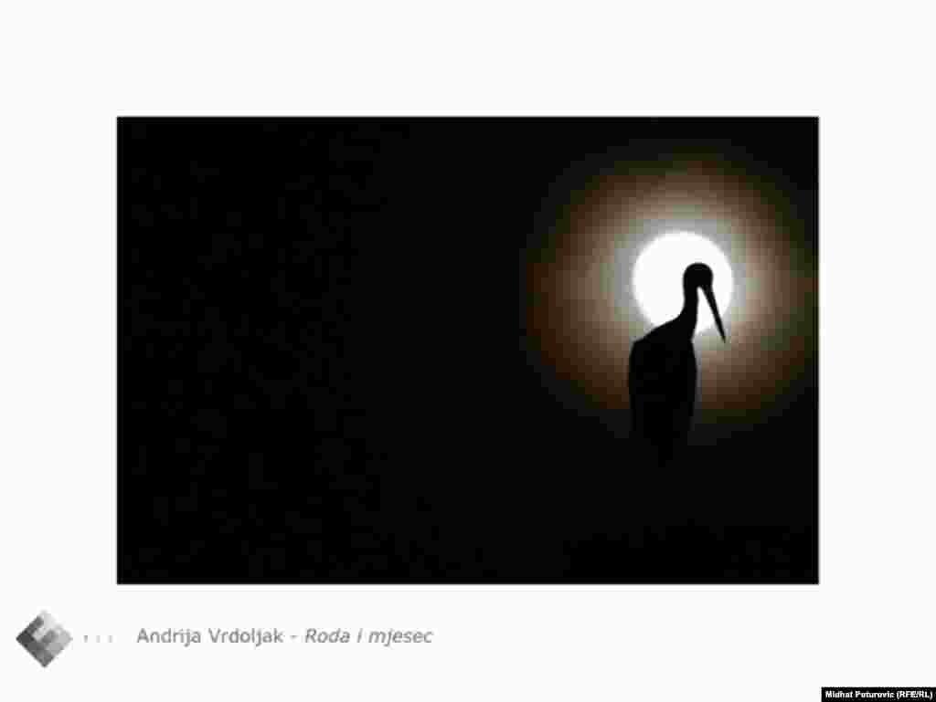 """Fotografija """"Roda i mjesec"""" Andrije Vrdoljaka"""