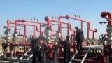 حقل الحلفاية النفطي في ميسان