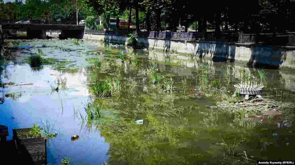 Салгир в районе проспекта Кирова