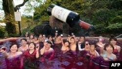 """Отдыхающие на курорте под Токио отмечают день """"Божоле"""", ноябрь 2012"""