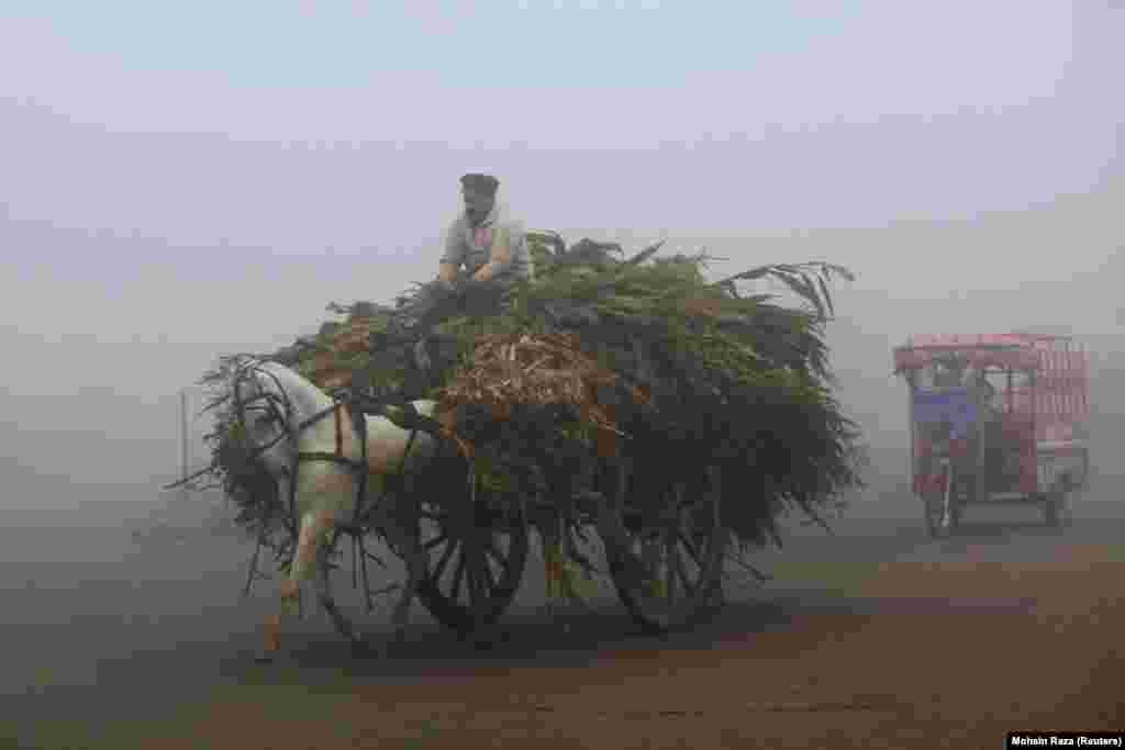 A man rides a horse-drawn cart amid dense fog on a cold morning along a highway in Lahore, Pakistan. (Reuters/Mohsin Raza)