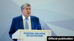 Алмазбек Атамбаев на форуме по сохранению снежного барса в Бишкеке. 25 августа 2017 года.