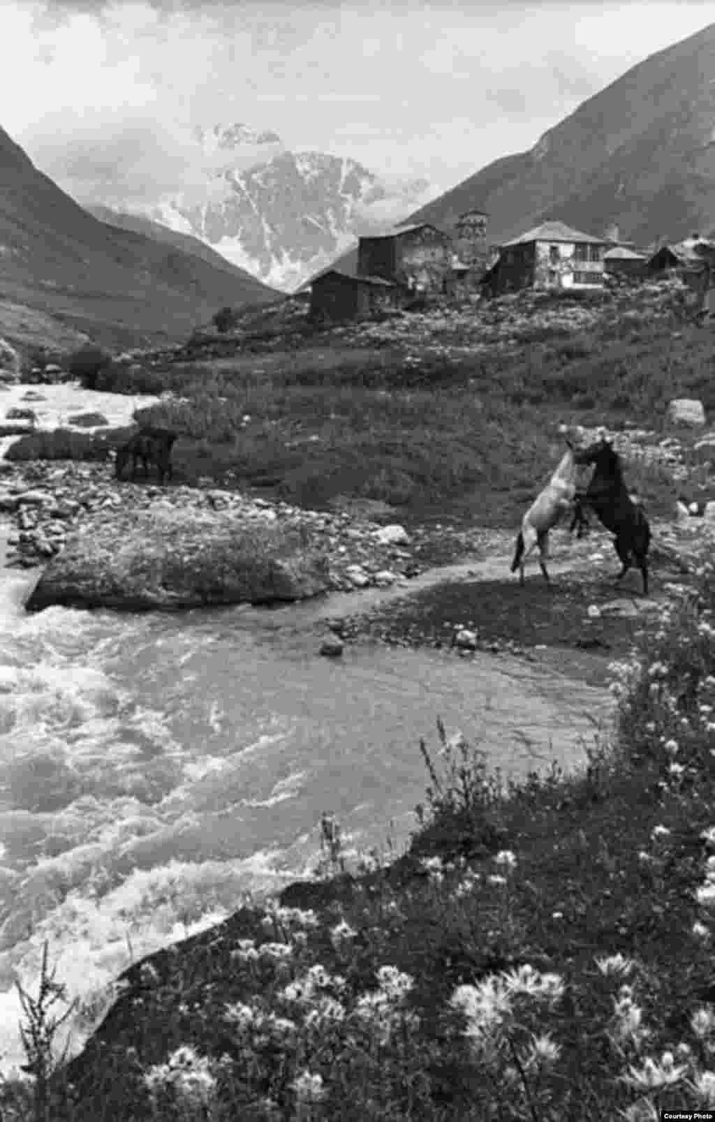 Гия Чхатарашвили, «Лошади» 1995, из серии «Ушгули», 1991-2000