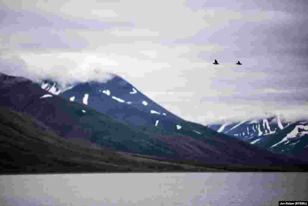Лето на Шпицбергене называют днем, а зиму ночью. Порой в полярный день солнце как будто сходит с ума и стоит над горизонтом далеко за полночь. А в полярную ночь луна здесь всегда полная.
