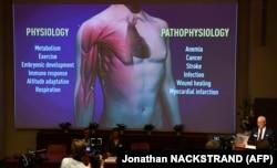 За словами Рендалла Джонсона (праворуч), відкриття науковців можуть допомогти в лікуванні анемії, онкологічних захворювань, інсульту, інфекційних захворювань та серцевих нападів