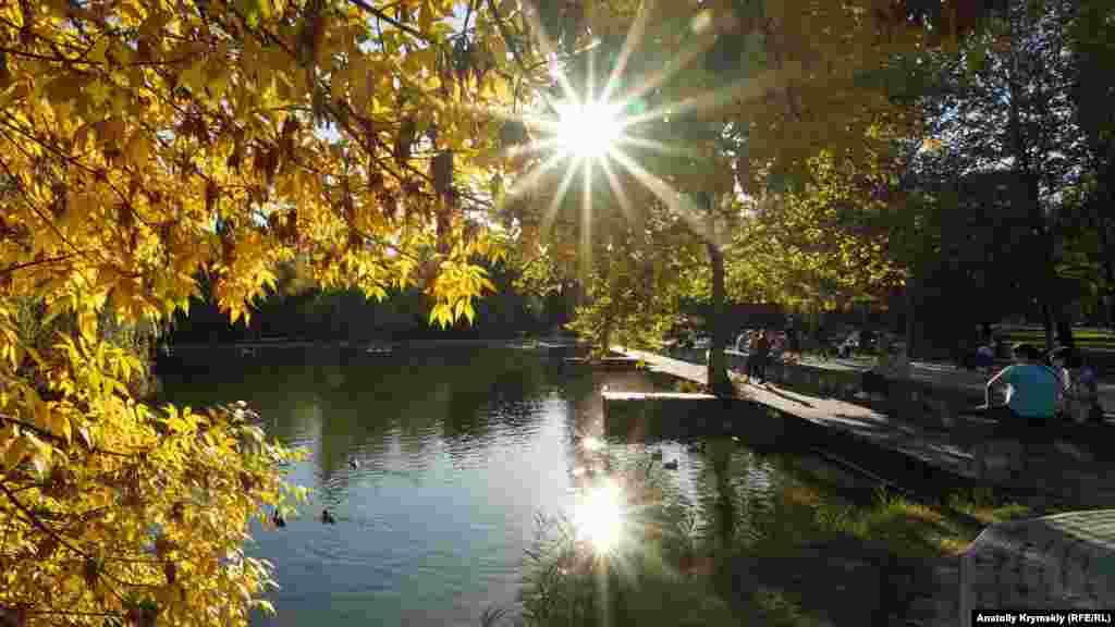 В парке первыми пожелтели ясени