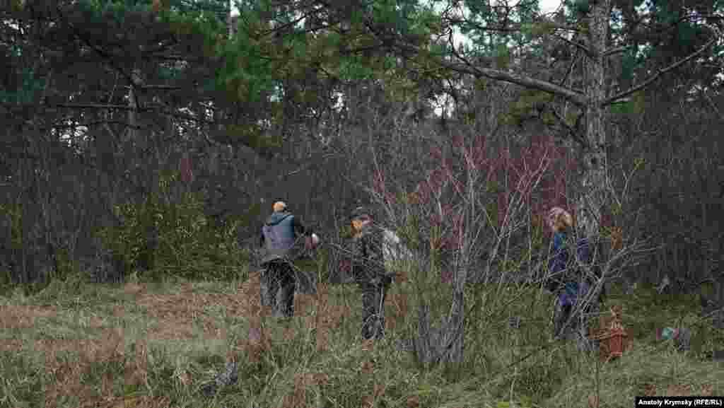 Грибні стежки Строгонівського лісу