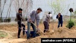 Türkmenistan: Daşary ýurt firmalardan işgärleriň şahsy maglumatlary talap edilýär