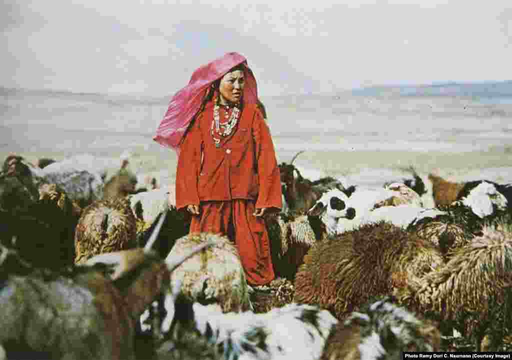 Кыргызская девушка пасет овец и коз на Памире. Фото середины 20-го века.
