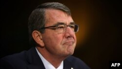 U.S. Secretary of Defense Ash Carter (file photo)
