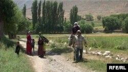Зардалы айылы