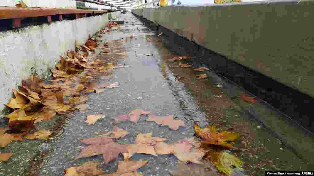 На трибуні в спортклубі Чорноморського флоту жовте листя платана плаває в калюжі