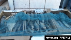 Астраханская вобла на керченском рынке
