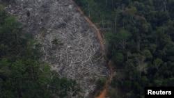 Zračni pogled na iskrčenu parcelu Amazonske prašume u nacionalnoj šumi Bom Futuro u Porto Velhu, Brazil