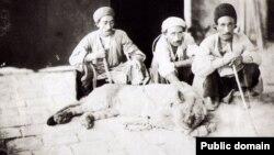 تصویری تاریخی با شیر در ایران