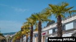 Пальми на міській набережній Ялти