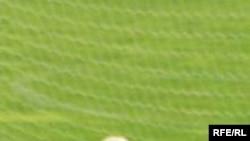 Когда речь заходит о футбольных прогнозах, непременно вспоминается, что мяч круглый, а поле - ровное