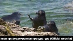 Мыс Лаканда на Байкале