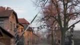 Auschwitz cover explainer