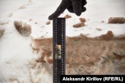 Отходы свинокомлексов сливают прямо в снег