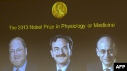 A screen displays photos of James Rothman (left), Randy Schekman (center), and Thomas Suedhof (right) when they are announced as joint winners of the Nobel Prize for Medicine in Stockholm on October 7.