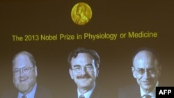 İsveç - Tibb üzrə Nobel mükafatının bu ilki qalibləri monitorda: soldan sağa: James E Rothman, Randy W Schekman, Thomas C Suedhof. Qaliblər mətbuat konfransında elan edilir, 7 oktyabr, 2013, Stokholm