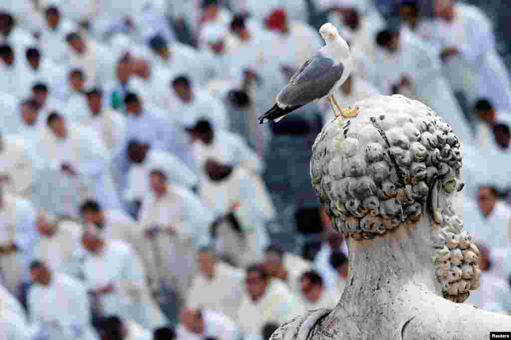 A seagull stands on a statue of Saint Peter as Pope Francis says mass at the Vatican on June 3. (Reuters/Alessandro Bianchi)