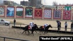 Скачки в Душанбинском Наврузгохе