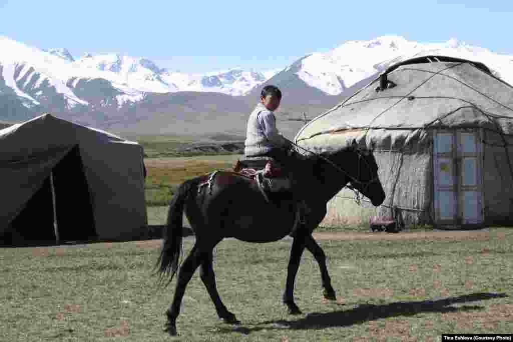Cуусамыр - Наверное, дети гор быстрей научатся ездить на коне, чем ходить по земле. Фото Тины Эшиевой