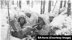 Фіни свою незалежність відвоюївали