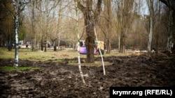 Саженцы молодых деревьев в Гагаринском парке Симферополя, февраль 2018 года