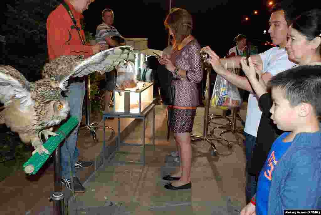 Перед входом в музей во время «Ночи в музее» собираются люди с живыми попугаями, совами, питонами и предлагают фотографироваться за деньги.