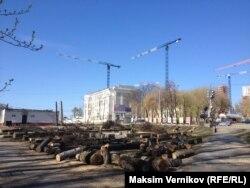 Вырубленные к чемпионату мира деревья в Екатеринбурге