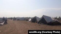 Жителей снесенных домов поместили в палатки.