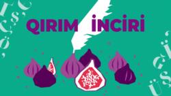 Третий урожай «Крымского инжира» | Доброе утро, Крым