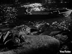 """Лягушка в фильме Чарльза Лоутона """"Ночь охотника"""", 1955"""