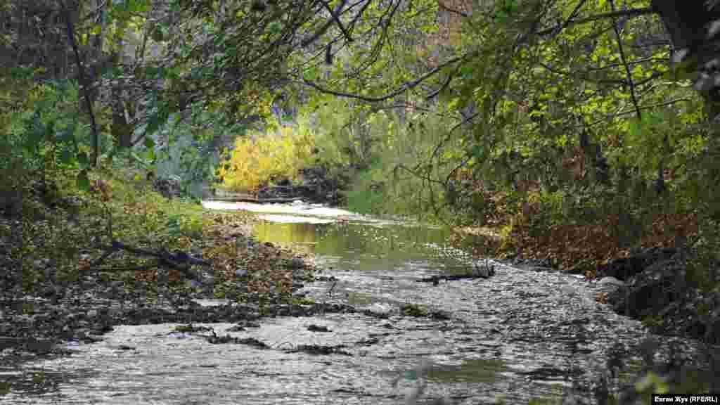 Бельбек – самая полноводная река Крыма, но в нынешнем засушливом году летом онапревратилась в небольшой ручей.Корреспондент Крым.Реалии прогулялся от Верхнесадового в Дальнее и запечатлел это на фото
