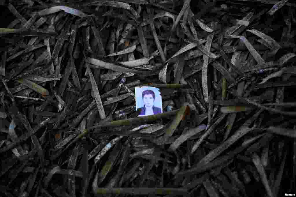 A passport photo left behind by a migrant is seen among seaweed on a beach on the Greek island of Lesbos. Of the record total of 432,761 refugees and migrants making the perilous journey across the Mediterranean to Europe so far this year, an estimated 309,000 people had arrived by sea in Greece, the International Organization for Migration said. (Reuters/Alkis Konstantinidis)