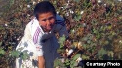 Qashqadaryoning Yakkabog' tumanidagi 70-maktab o'quvchisi (2012 yilning 23 oktyabr kuni suratga olingan).
