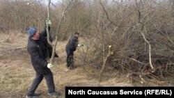 Добровольцы очищают места вокруг исторического комплека