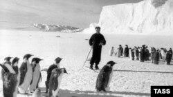 В 1950-е годы СССР завоевывал космос и Антарктиду