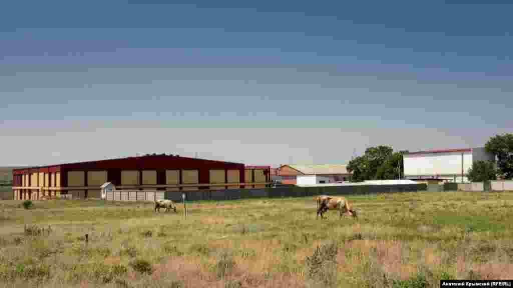 М'ясопереробний комбінат групи компаній «Скворцове» з'явився в селі у 2002 році. Це головний виробничий об'єкт тутешніх місць