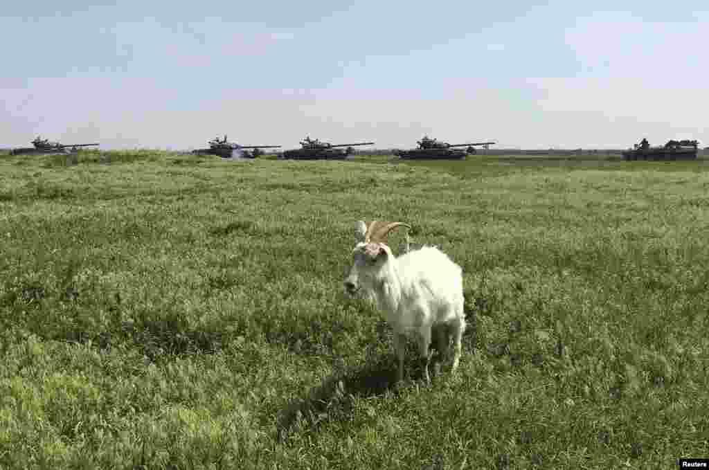 Мовчазний свідок пересування військової техніки на кордоні Росії та України