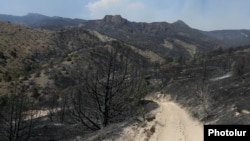 Armenia - Trees in the Khosrov Forest State Reserve burned by a wildfire, 14Aug2017.