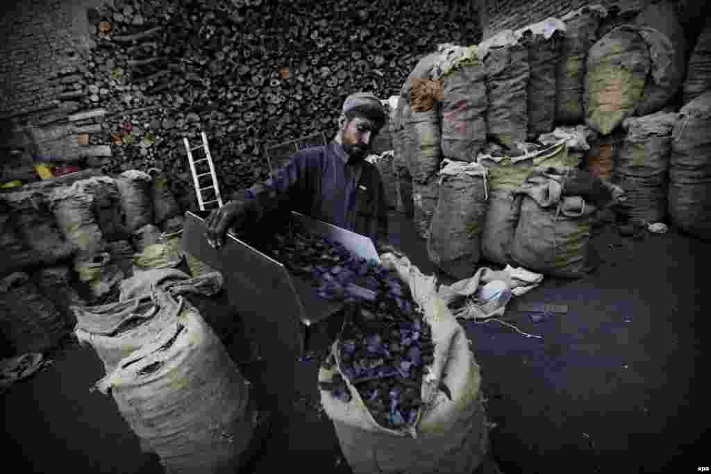 A laborer sells coal in Peshawar, Pakistan. (epa/Bilawal Arbab)